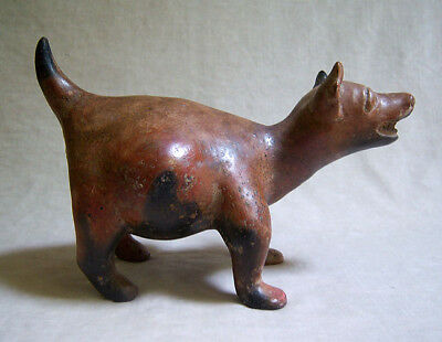 RARE Pre-Columbian COLIMA STANDING HAIRLESS DOG