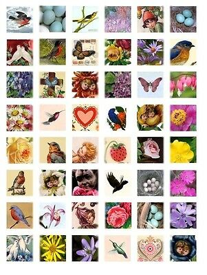 """Harbingers of Spring 1""""x1"""" Tile Images Collage Sheet for Scrapbooking Projects"""
