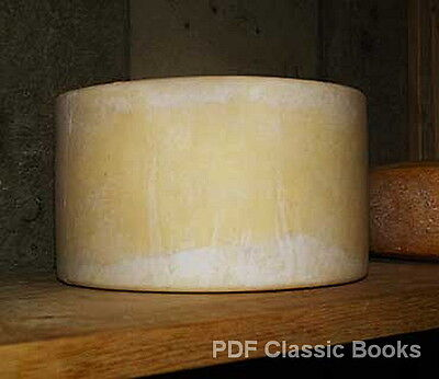 Handbook of Cheddar Cheese Making, A Complete Guide ~CD