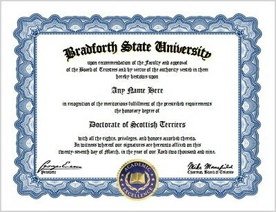 Scottish Terrier Diploma - Terriers Dog Lover Certificate Fun Unique Gift