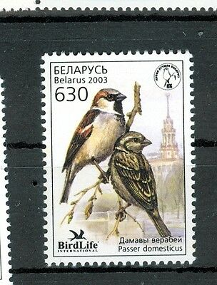 UCCELLI - BIRDS BELARUS 2003 set