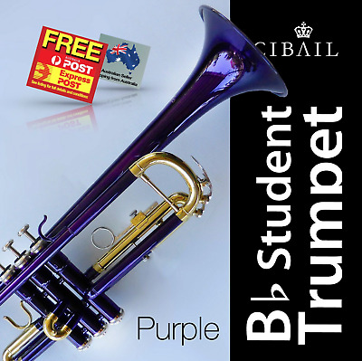 White Bb CIBAILI Trumpet • High Quality • Brand New With Case • Great for school