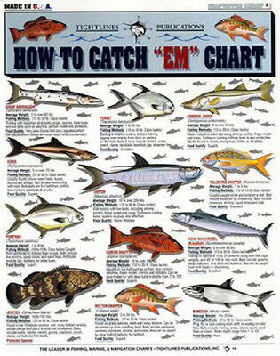 """SALTWATER FISH How to Catch """"EM"""" Chart - Tightline Tightlines Publications #1"""