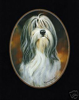 Bearded Collie Lapel Pin  Classic