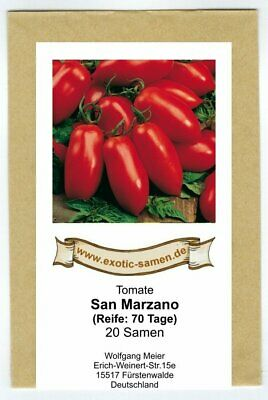 tomate san marzano flaschentomate tomatensamen saftig. Black Bedroom Furniture Sets. Home Design Ideas