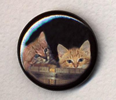 MIGHTY BOOSH KITTENS badge button pin - SO CUTE !