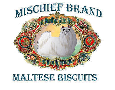 Maltese  Biscuit Tin - Treats and Collectible Tin