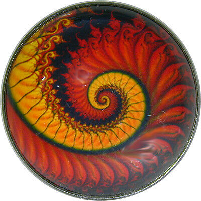 "Crystal Dome Button Mystical Spiral Lg Sz 1 & 3/8""  MS 36"
