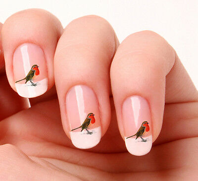 20 Nail Art Decals Transfers Stickers #258 - Bird Robin