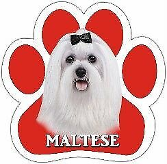 Maltese Terrier Dog Paw Shaped Vinyl Car UV Coated Magnet Great 4 Locker Fridge