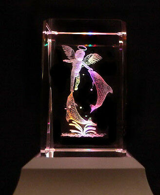 Angel On Dolphin Laser Collectable Crystal LED Night Light Gift FRY03