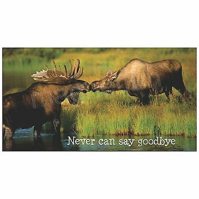 Kissing Moose Magnet Picture Never Can Say Goodbye