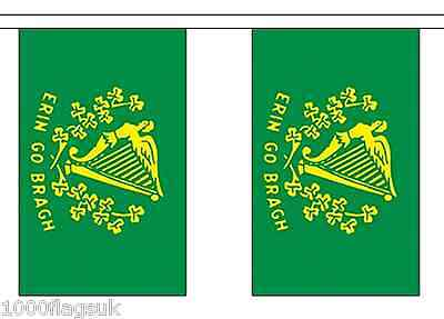 Ireland Erin Go Bragh Polyester Flag Bunting - 6m long with 20 Flags