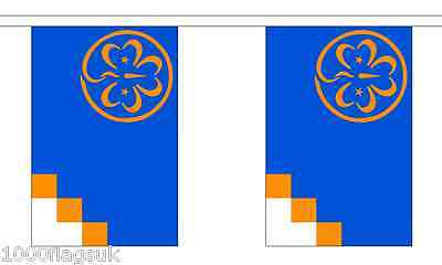 International Girl Guides Polyester Flag Bunting - 9m long with 30 Flags