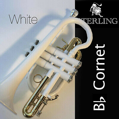 PURPLE Pro Bb Sterling CORNET • With Case and Accessories • BRAND NEW •