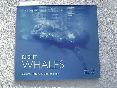 Right Whales Book Maritime Nautical Marine (#079)
