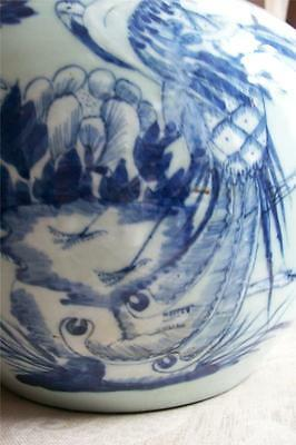 Antique 1800s Chinese Qing Dynasty Jar Plants & Pheasant Blue-White With Lid