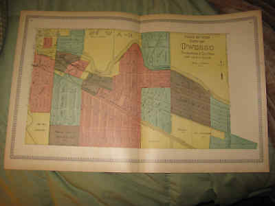 Antique 1895 Owosso Shiawassee County Michigan Map 3Rd Ward Land Owners Nr