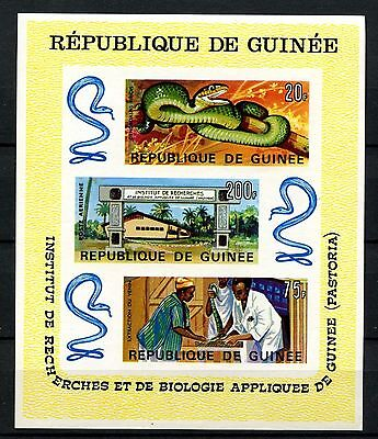 Guinea 1965 SG#MS602 Snakes Pastoria Research Institute MNH Imperf M/S #A30054