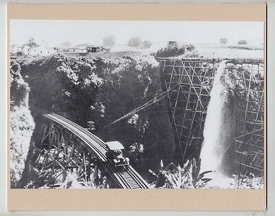LAUPAHOEHOE TRESTLE BIG ISLAND 1920's HAND PRINTED SILVER HALIDE PHOTO on 8x10""