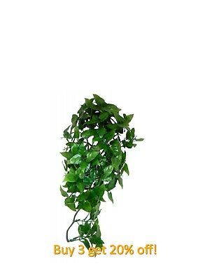Komodo Philodendron Plastic Hanging / Trailing Plant / Vine 4 reptiles & amphibs