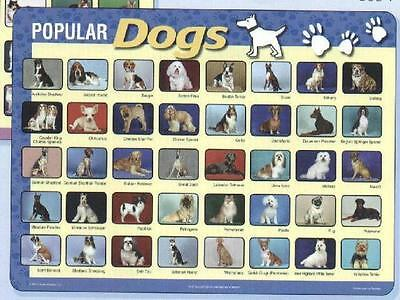 Dogs Educational Activity Placemat