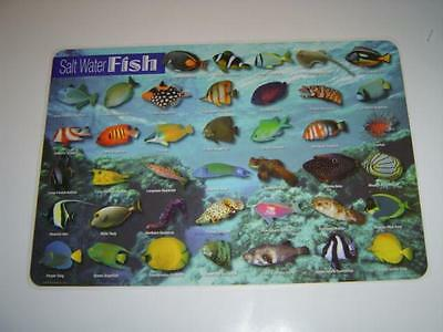 Fish - Salt Water Fish Activity Placemat