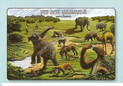 Ice Age Mammals Educational Activity Placemat
