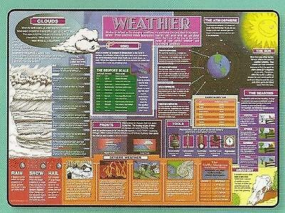 Weather Educational Placemat