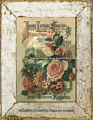 1891 VICTORIAN ADV. NY FLORAL PARK  ART PRINT Roses Rare Flowers Swans Fountain