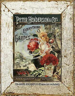 Peter Henderson & Co 1887 EVERYTHING FOR THE GARDEN Antique Advertize ART PRINT