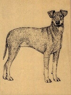 1 Manchester Terrier Dog Rubber Stamp for Scrapbooking