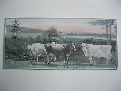 """VINTAGE 1920's SMALL  8"""" by 3 5/8"""" COWS CATTLE CALENDAR SAMPLE PRINT LITHO #47"""