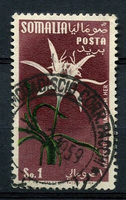 Somalia 1955 SG#289, 1s Flowers Used #A68717