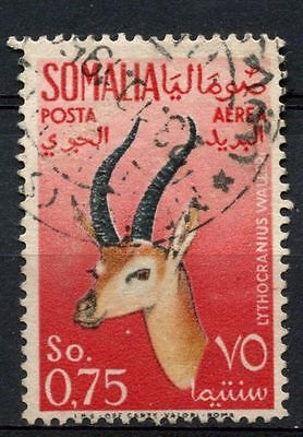 Somalia 1955 SG#294, 75c Air, Gerenuk Used #A68767