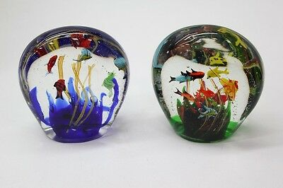 NEW Large 2.5kg Tropical Fish Tank Glass Paperweight - Colourful & Very Pretty!