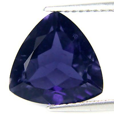 Iolite Trillion  Cut 5 Mm Only $1.49 Each
