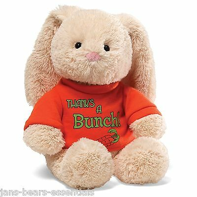 Gund - T-Shirt Bunny - Thanks a Bunch - 12""