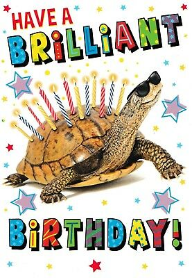 female male funny open birthday card humorous animal unisex choose from 12 cards