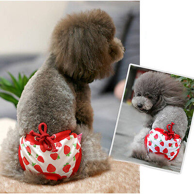 Cute Female Pet Dog Puppy Sanitary Panty Pant Short Striped Diaper Underwear New