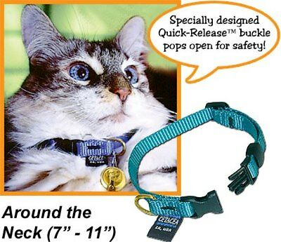Safety Quick-Release Cat Collar without Bell - Choose the Color - PTC38CAT1