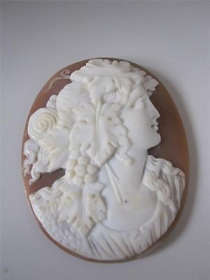 Beautiful Victorian Carved Shell Cameo Of Bacchante