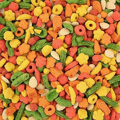 Kaytee Exact Rainbow Chunky Complete Large Parrot Food Biscuit 1.13 Kg / 2.5 Lb