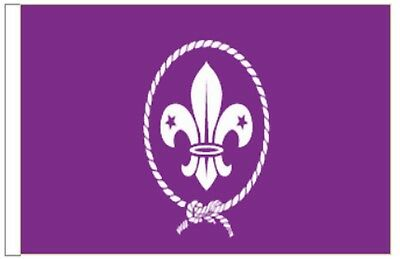 Scouts Purple Organisation Bunting 6 metres long 20 flags
