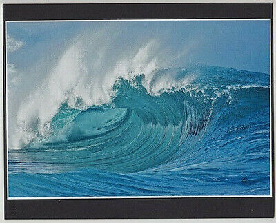 "Awesome 20 Foot Waimea Bay Wave, Haleiwa, Oahu, Giclee Photo On 8X10"" Mat Board"