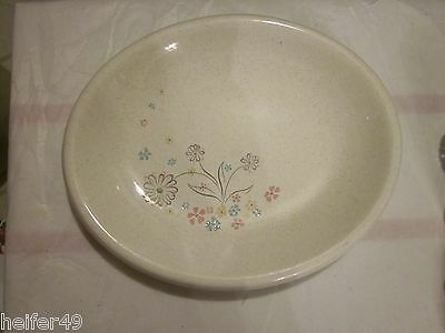 W S George Community Ware Oval Serving Platter !!!
