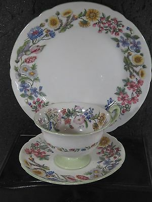 Shelley England 3pc HEDGEROW FOOTED CUP, SAUCER & SALAD PLATE