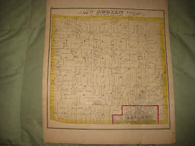 Antique 1874 Adrian Township Lenawee County Michigan Map & Lithograph Print Nr