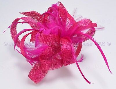 Melbourne Cup Carnival Race Ascot Wedding Feather Fascinator Head Band HOT PINK