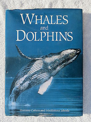 Whales And Dolphins Book Maritime Nautical Marine (#177)